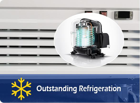 Outstanding Refrigeration   NW-LG232B-282B-332B-382B single glass door chiller